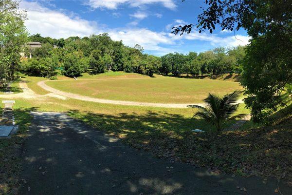 Grass Field & Sand Track